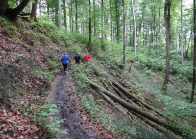 Marienschlucht-trail-1