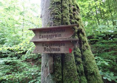 Marienschlucht-trail-6