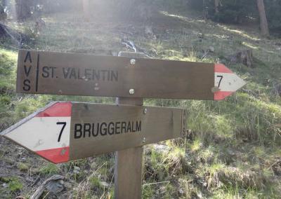 17-noch-wenige-kilometer-ins-ziel_TAR-Etappe-6-103553_o