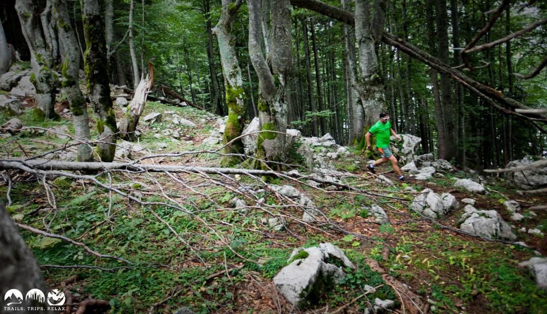 carsten-wald-downhill