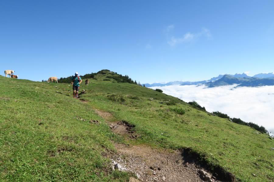 kitzbueheler-alpen-1
