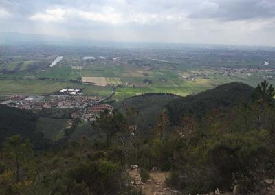 Monte_Pisani_2803