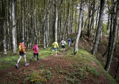 Nationalpark_Casentinesi_Emilia_Romagna_Tag3_2909_B