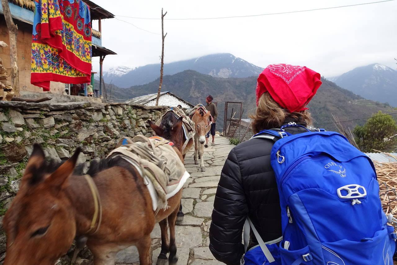 Nepal-Annapurna-2017_311