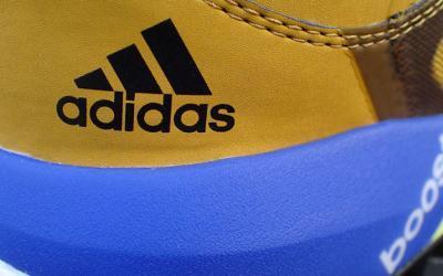 Adidas – terrex boost GTX – Trailrunningschuh