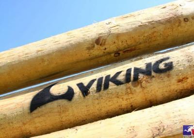 viking-heroes-challenge