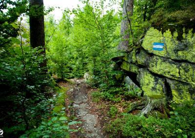 woerthersee-trails