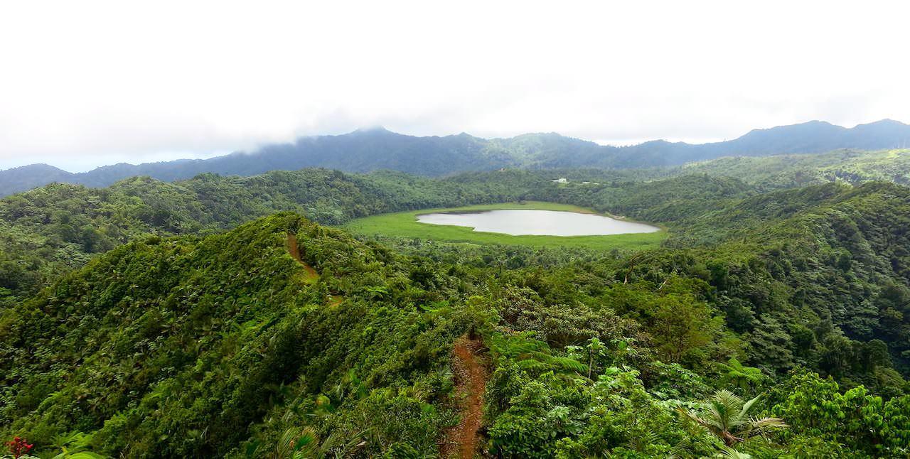 Regenwald-Trekking auf der Gewürzinsel