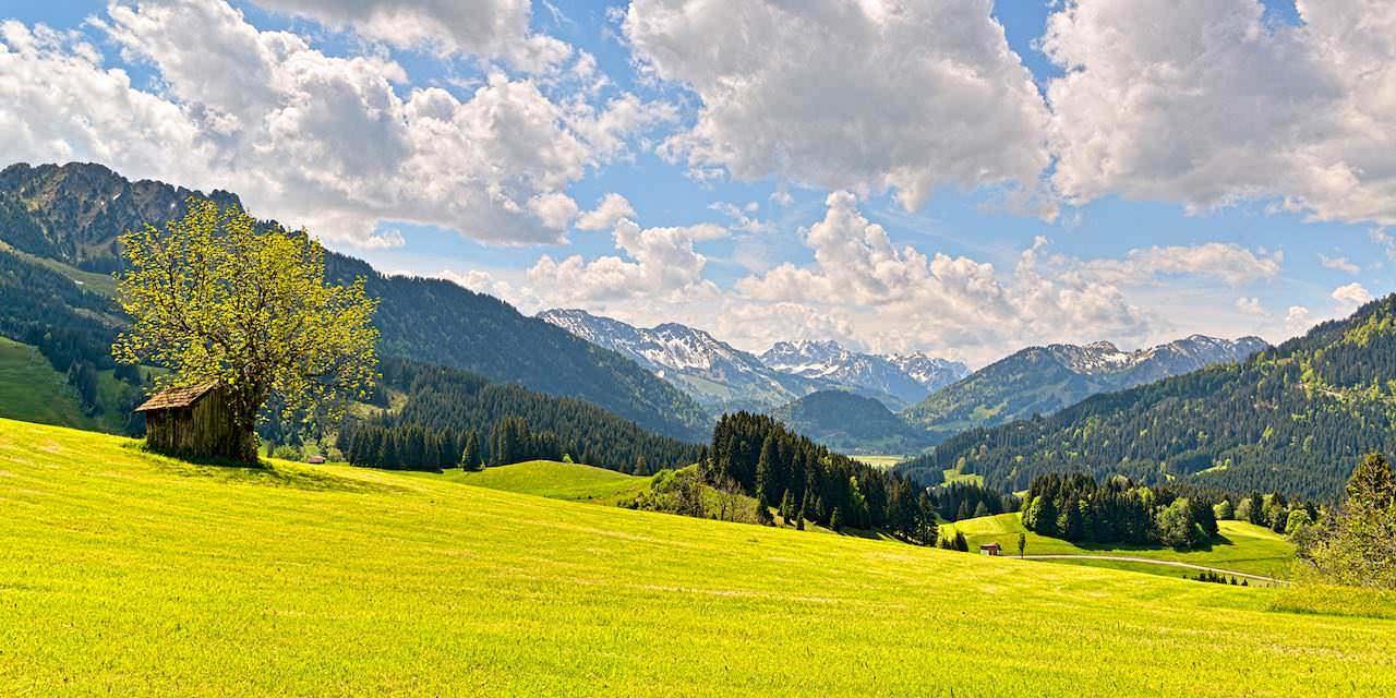 Farbenprächtiges Frühlingserwachen im Tiroler Hochtal