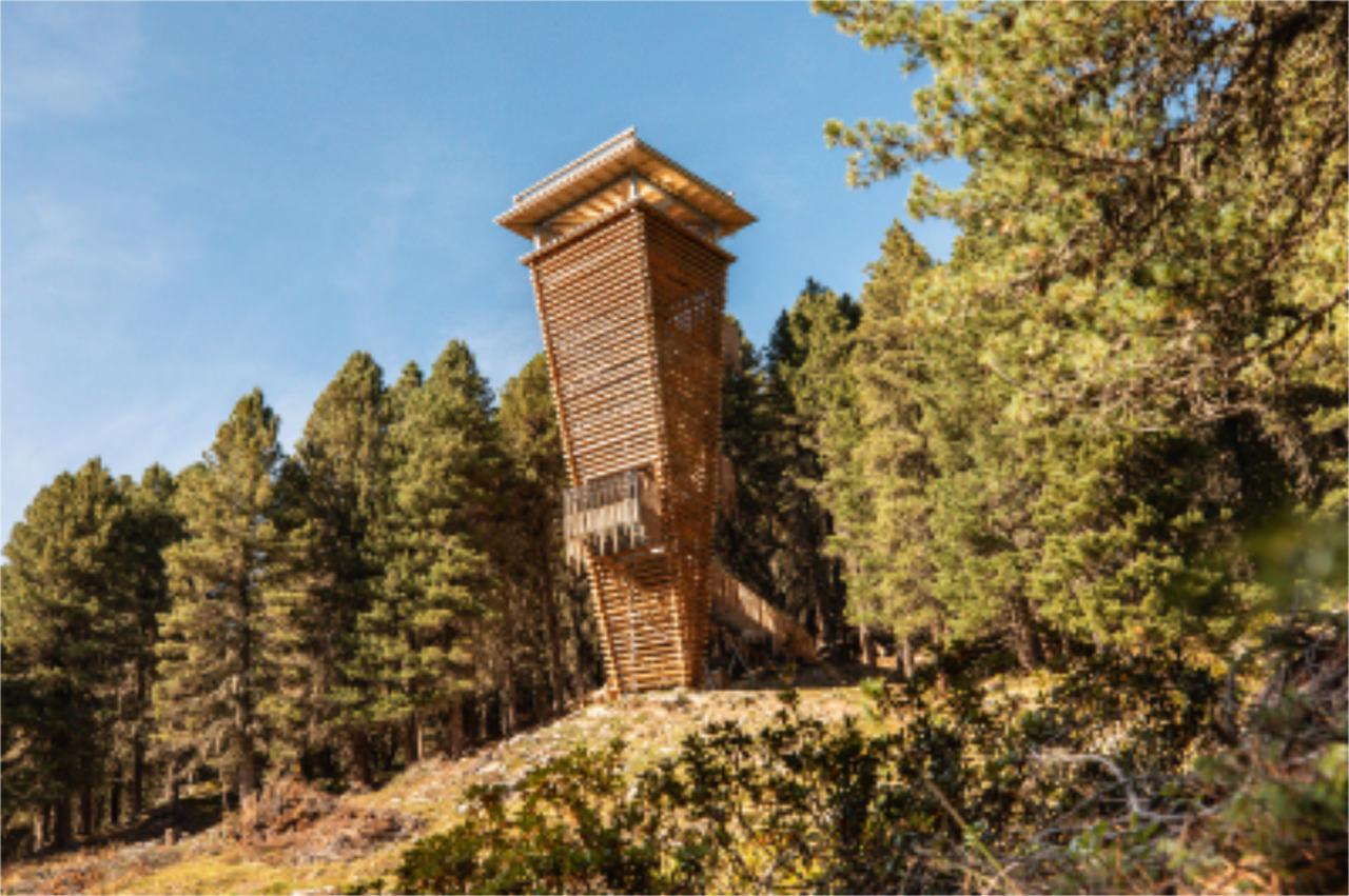 Wildtierbeobachtungsturm Oberhaus